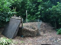 Leaf compost
